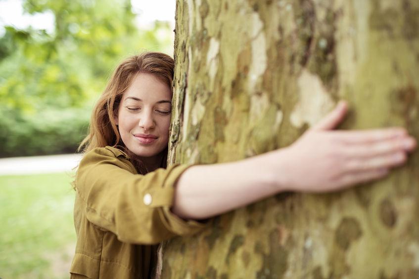 Dendroterapia. Drzewa, które leczą emocje 1